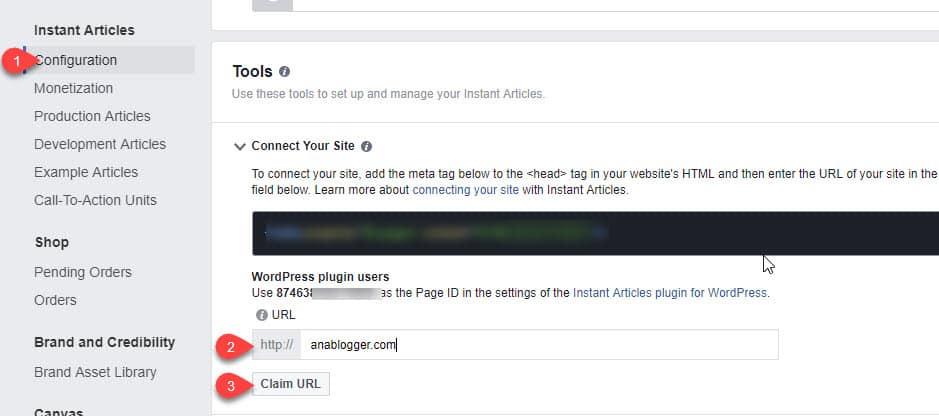 شرح كيفية تفعيل المقالات الفورية في موقع ووردبريس في ثلاث خطوات 11