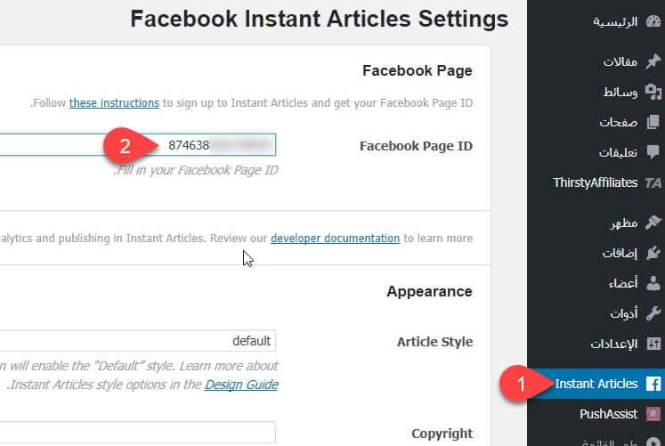 شرح كيفية تفعيل المقالات الفورية في موقع ووردبريس في ثلاث خطوات 9